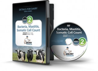 Bacteria, Mastitis, Somatic Cell Count DVD