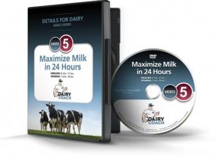 Maximize Milk