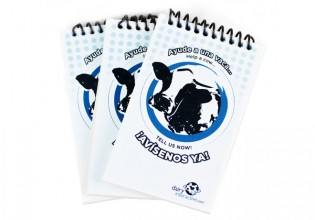 Cow Notebooks DC site pic