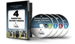 dvd-4pack